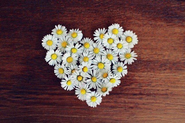 お花のハート