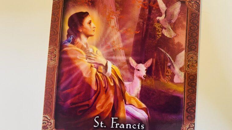聖フランチェスコのオラクルカード